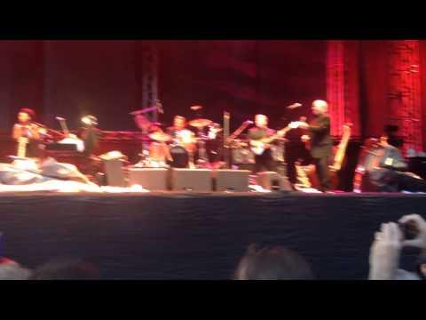 Van Morrison In The Garden Gloria Live In Stockholm