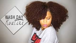 My Wash Day Routine for Long Natural Hair