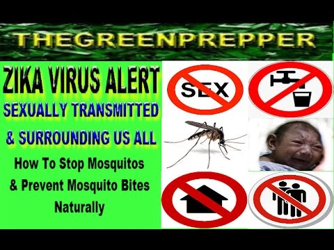 US ZIKA VIRUS NOW SEXUALLY TRANSMITTED - GETTING RID OF MOSQUITOES NATURALLY - MOSQUITOS