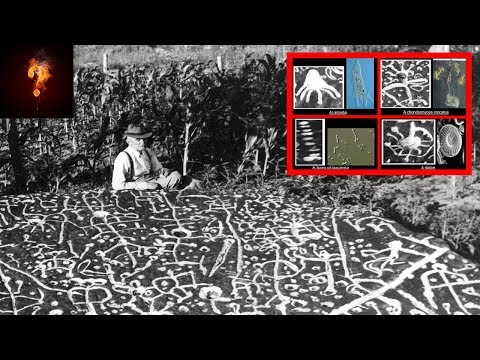 "Ancient Alien ""Study Of Earth"" Found In North Carolina?"