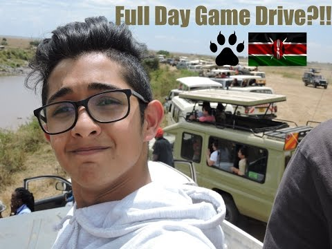 Masai Mara-Full Day Game Drive (watched the crossing)