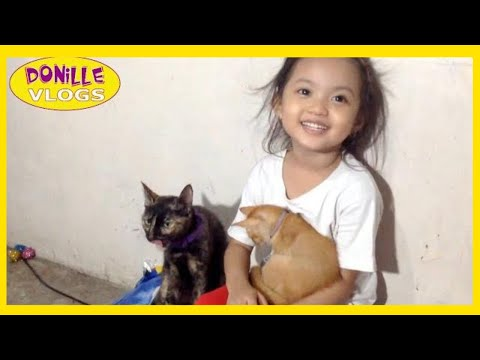 VLOG: Cat Lover 5 yr old. Kwento ni Cailee. Filipino youtubers family vloggers