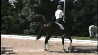 Bill Woods dressage video: Aachen 95 Klimke.mpg