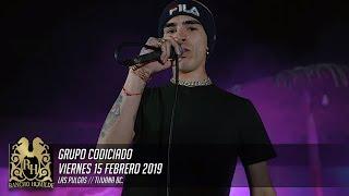 Nuevos Corridos De Grupo Codiciado 2019