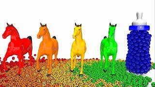 Учим цвета | Мультик для детей | Детские бутылки | Шарики | Лошадь | Cartoon for kids | Bottle, Ball