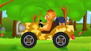 Bajeczka po polsku o zwierzętach z lasu