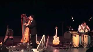 Moliendo Café - Electric Harp