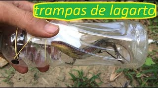 how to make lizard traps - trap lizards using plastic bottles