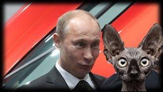 В ожидании  трибунала над Путиным / Кот Костян