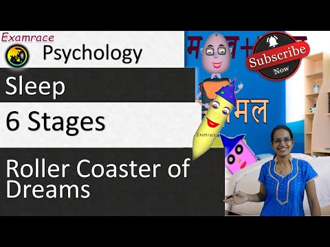 6 Stages of Sleep & 3 Biological Reasons for Sleep - Roller