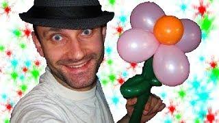 Цветок из шариков шдм и круглых аэродизайн ★ flower of balloons(Здесь я показываю как делать простой цветок из шаров ШДМ и маленьких 3-х дюймовых круглых шариков. Здесь..., 2014-03-12T12:13:51.000Z)