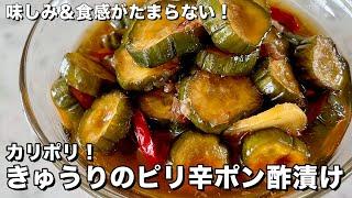 ご飯がすすむ副菜シリーズ!味しみ&食感がたまらない!きゅうりのピリ辛ポン酢漬けの作り方