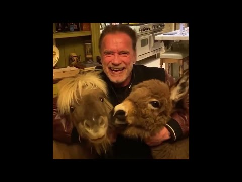 Schwarzenegger y sus mascotas te piden que te quedes en casa