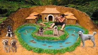 Build Swimming Pool Underground Fish Around Secret Underground Dog House