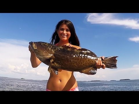 Crystal River Fishing, Scalloping and Spearfishing Shallow Water Grouper
