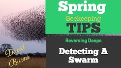 Stay At Home Special: Beekeeping Tips For Early Swarm Detection, Reversing Boxes & Queen Issues