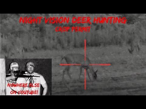 Night Vision Deer Hunting (2 Kills!)