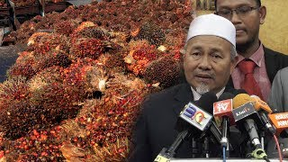 Felda settlers demand Putrajaya set price floor for palm oil thumbnail