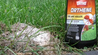 Ortho Orthene Fire Ant Killer Review