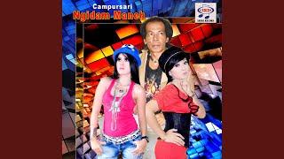 Gambar cover Oplosan