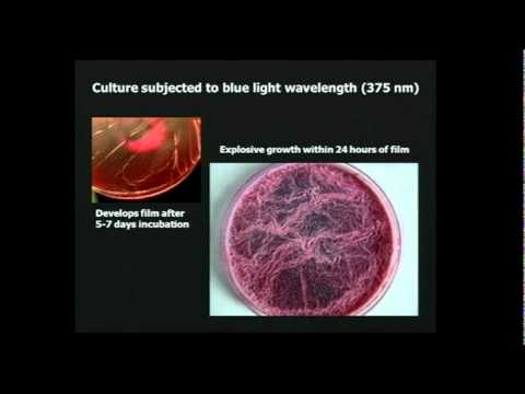 From Chemtrails to Pseudo-Life: The Dark Agenda of Synthetic Biology (FULL LENGTH VIDEO)