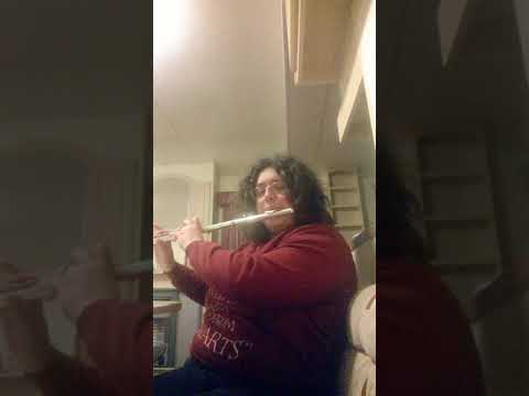 Musical theatre Flute Cover one hand one heart from west side story