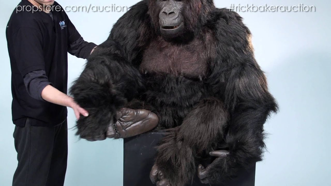 Uncategorized How To Make A Gorilla Costume rick baker auction lot 61 complete gorilla jody st michael costume display youtube