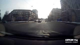 Каркам Tiny. Культурные собаки Петербурга на автомобильный видеорегистратор