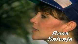 Дикая роза & Rosa Salvaje HD