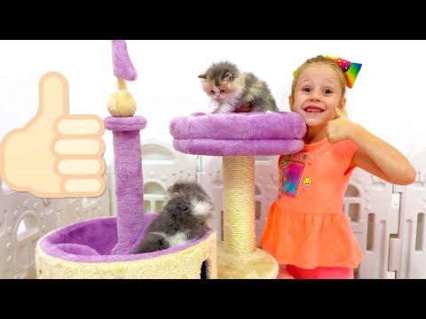 Настя и её приключения с котятами