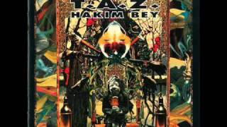 Hakim Bey- Poetic Terrorism (with Bill Laswell)