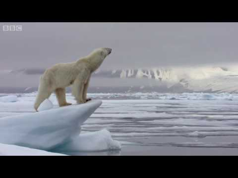 ES 101 Final - Climate change and the ice caps