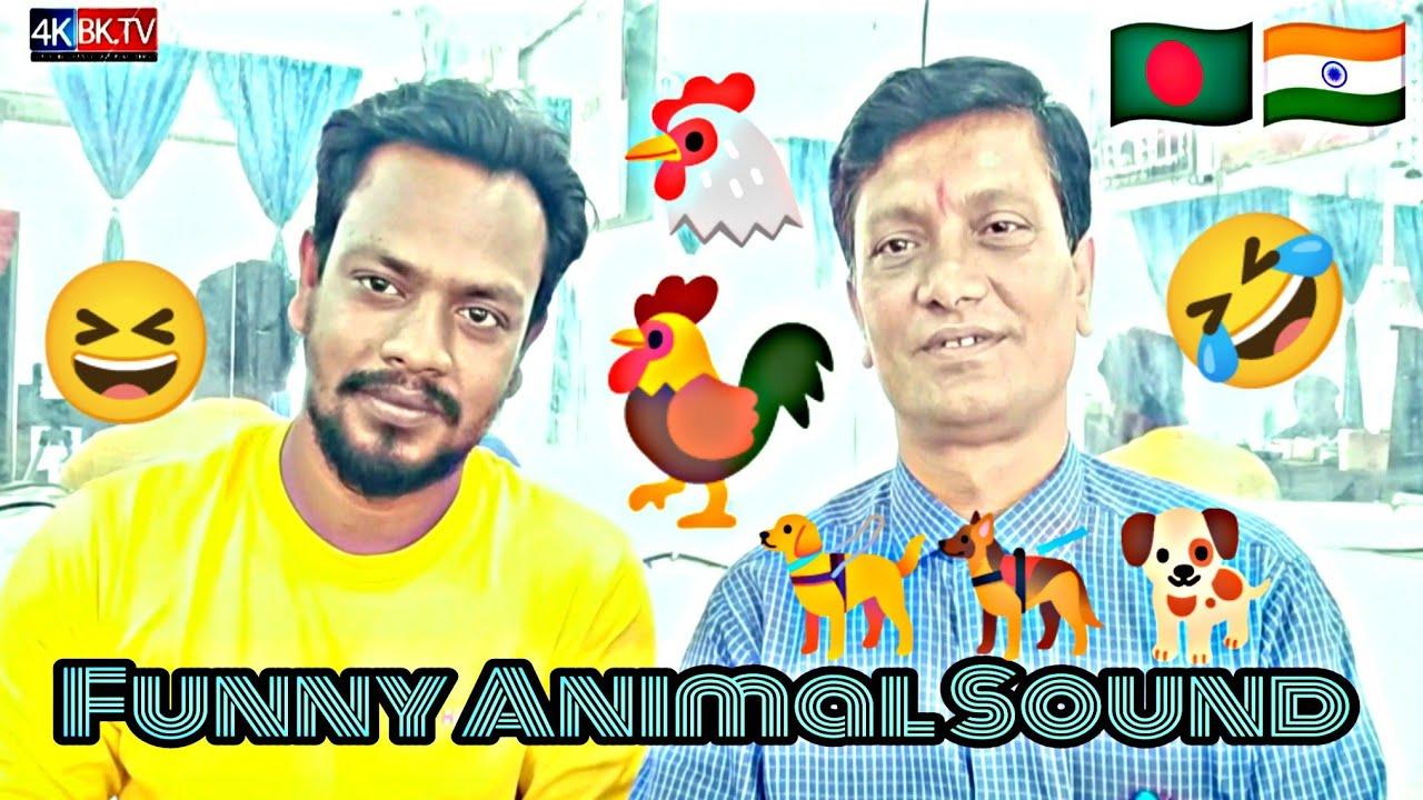 অসাধারন প্রতিভা পশু পাখির ডাক হুবহু নকল Funny 🤣 Animal Sound News Billal Khan Comedy Koutuk 4K BK TV