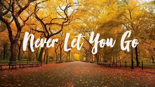 Kygo - Never Let You Go ft. John Newman ( lyrics )