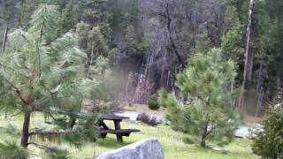 Sourgrass Recreation Area 3