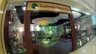 Euphony Musical in China