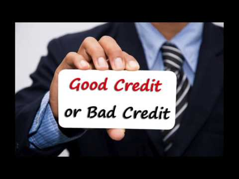 411 Business Listing - Required by Business Credit Reporting Agencies