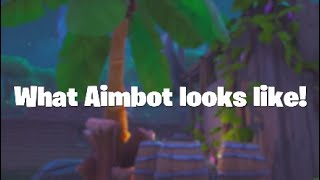 What Aimbot Looks Like in Fortnite | Fortnite Montage