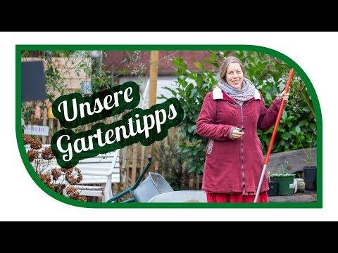 Gartentipps im Januar 🌱 Erste Aussaat für die Jungpflanzenanzucht 🎍Gartenarbeit im Januar
