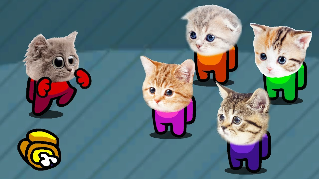 Among Us But It's Impostor Cats (Distraction Dance Animation)