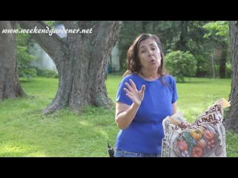 Product Review:  Just Natural Premium Organic Garden Soil