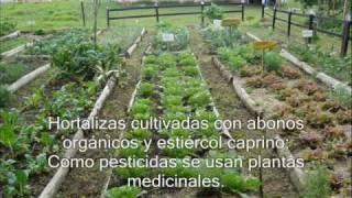 Prácticas en una granja autosostenible
