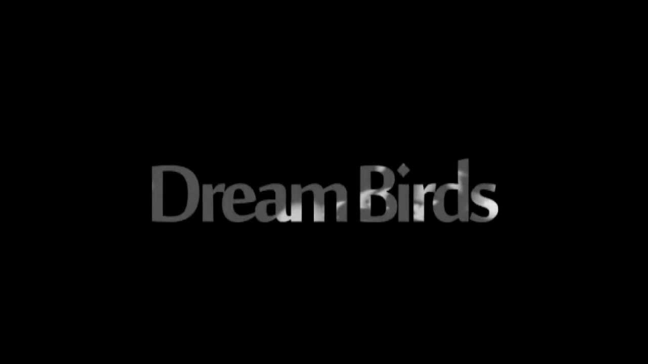 Dream Bird, what dream the Bird in a dream to see 68