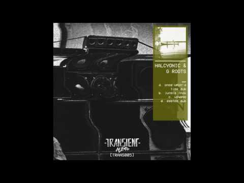 Halcyonic & G Roots - Voyage (TRANS005)