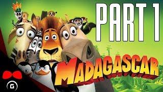 Madagascar | #1 | Agraelus | CZ Let