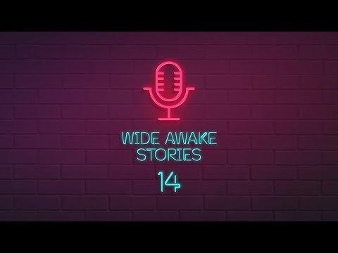Wide Awake Stories #014 ft. Above & Beyond, Mirik Milan, Slushii, Ray Volpe & Tisoki