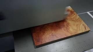 Emily -UV Flatbed Printer - ViYoutube