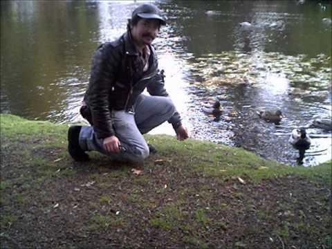 randy burke alive in the park.wmv