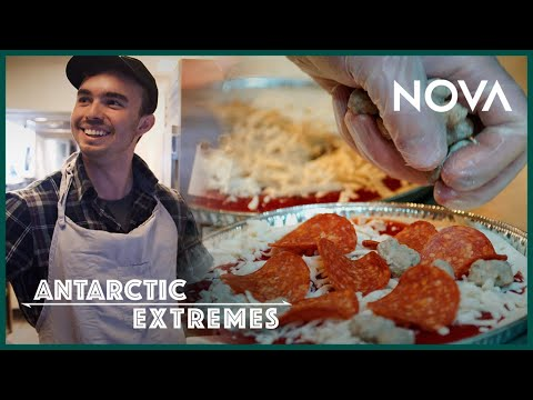 What Do You Eat in Antarctica?   Antarctic Extremes