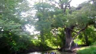 aldama tamaulipas el rio